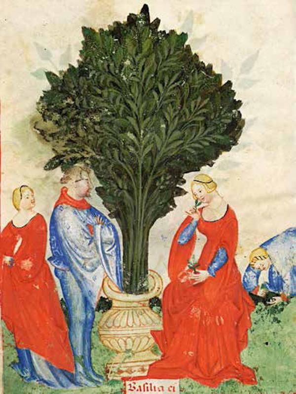 穿红衣的优雅女子<BR/>尽管蓝色系和黑色系相继流行起来,但是在14 世纪的意大利,最美丽的长裙依然应该是红色的。对于年轻的少女,红色象征优雅、爱情和美貌。每当节日喜庆的场合,她们都会身穿红衣,红色也是新娘出嫁的服色。<BR/>《健康全书》,抄录并绘制于米兰,约1390— 1400 年。巴黎,法国国立图书馆,拉丁文手稿1673 号,22 页反面