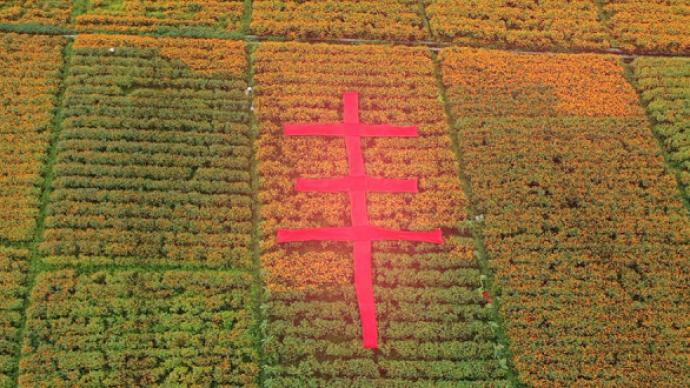 《豐收中國》2020年中國農民豐收節晚會今晚播出