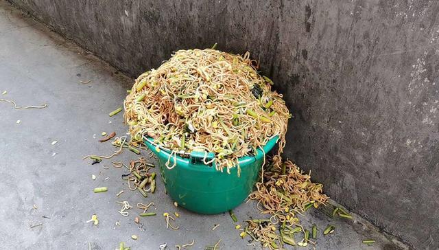 9月25日,安徽省阜阳市颍东区杨楼孜中心小学最新制作的一种营养餐被很多学生表示味道实在太差,特别难吃,于是很多学生将营养餐倒进了垃圾桶里。
