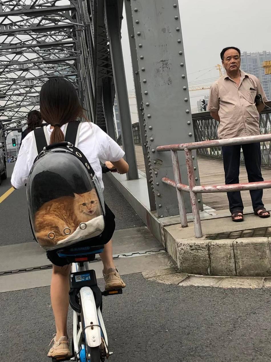 2020年9月19日,浙江路桥,背猫骑车的女孩。澎湃新闻记者 周平浪 图