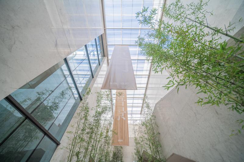 展厅外布置的竹子