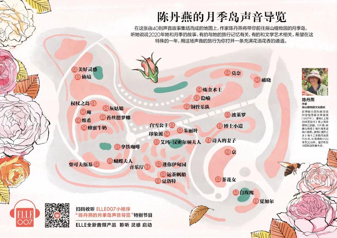 陈丹燕月季故事声音地图