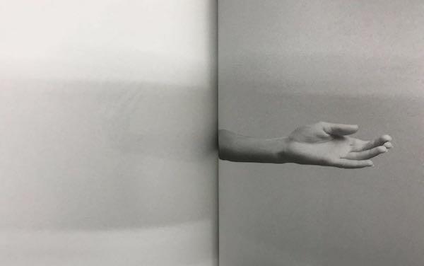 纪录芭蕾舞演员的手的书籍