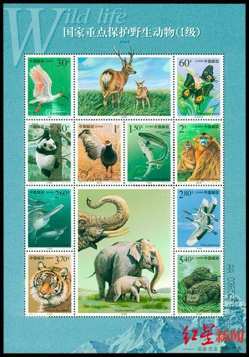 国家邮政局发行的《国家重点保护野生动物》特种纪念邮票。图据网络