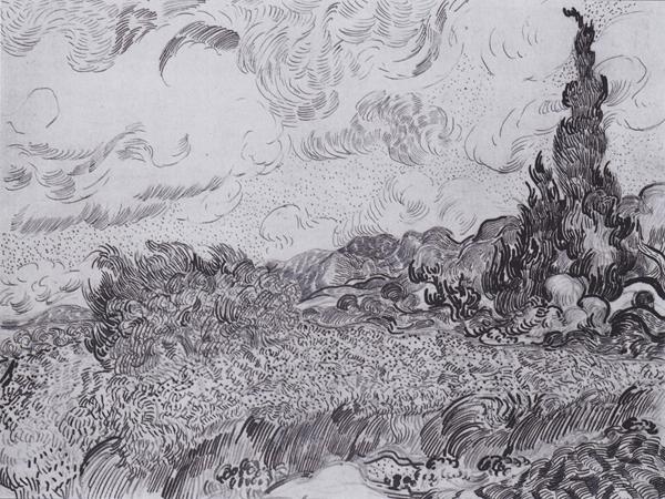 图 4 《麦田里的柏树》(素描版),1889年6月下旬,素描,47cm×62cm,荷兰凡·高美术馆