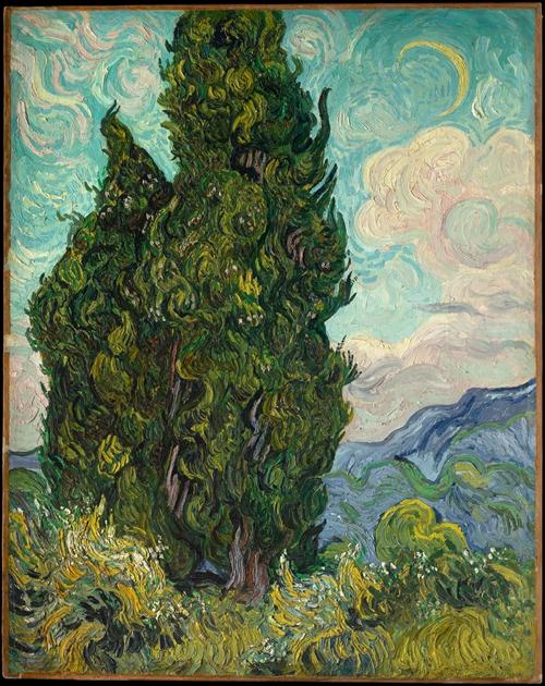 图 5 《麦田里的柏树》,1889年,布面油画,93.4cm×74cm,美国大都会博物馆