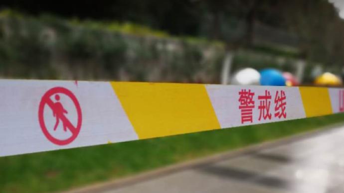 湖南平江32岁男子将母亲杀害后自首,警方通报:有精神病史