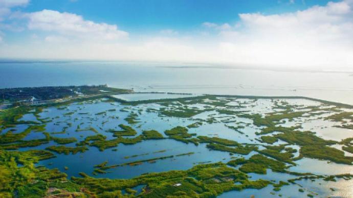 長三角議事廳·周報|江浙滬推出聯合河湖長共同治水
