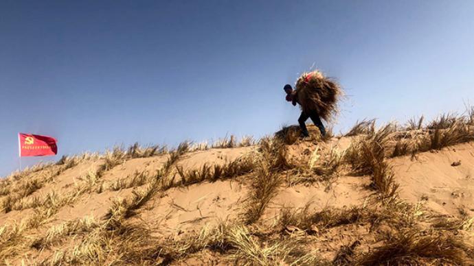 初心之路丨武威六老漢治沙:吃住在沙漠,三代接力造萬畝綠洲