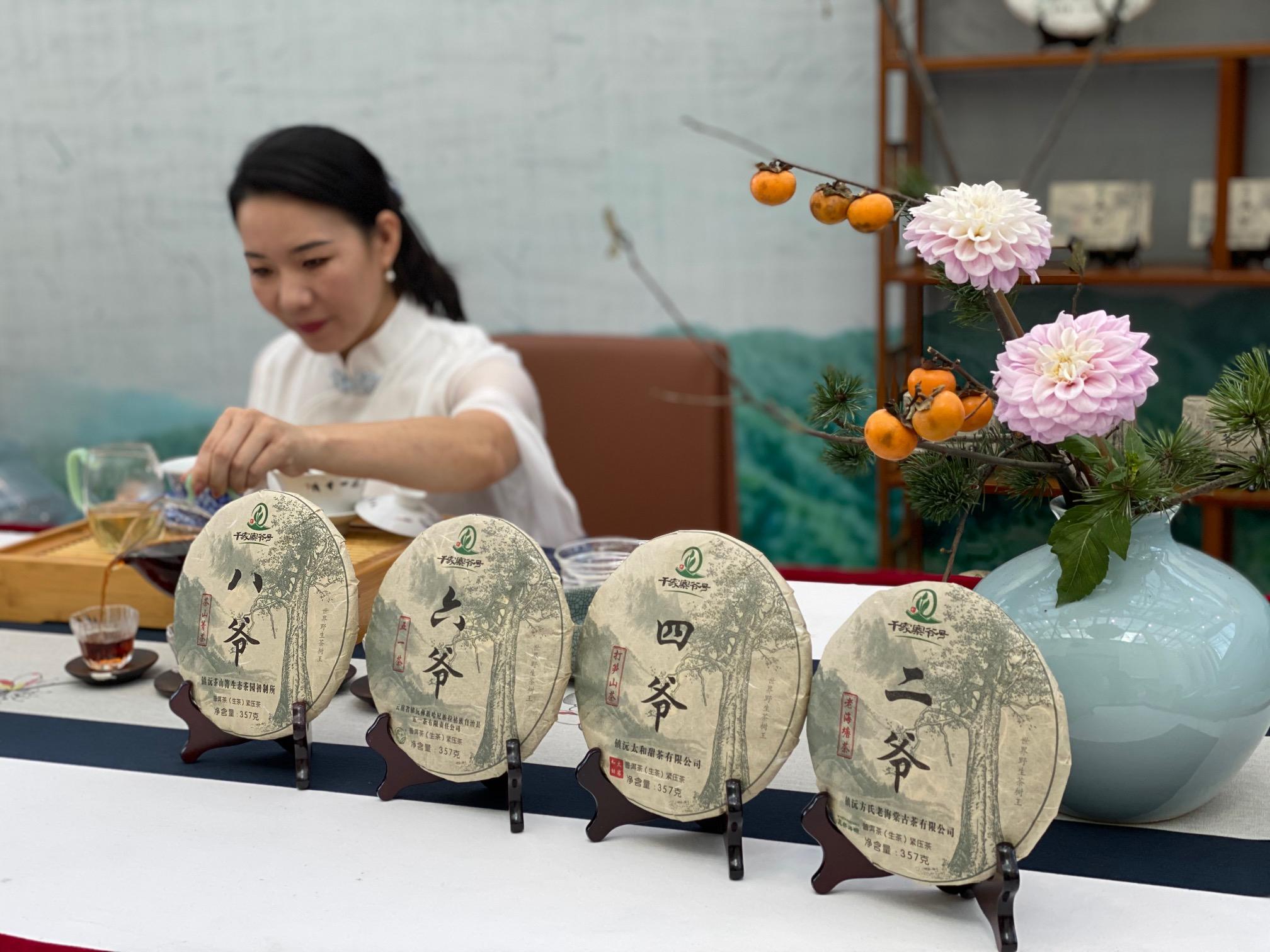 普洱镇沅县八大产区的普洱茶分别叫大爷、二爷、四爷、八爷澎湃新闻记者 俞凯 图