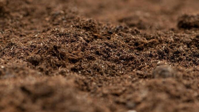 卢旺达发掘一处大屠杀遇难者乱葬坑,埋有约五千具遇难者遗骸