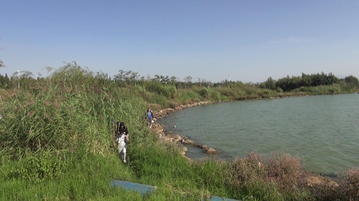 滇池湖畔 罗菲视频截图