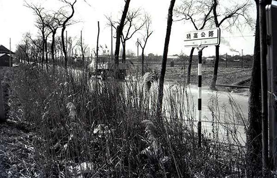 1990年,浦东当时最宽最长的杨高公路。茅正元 供图