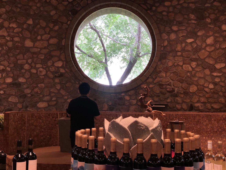 银川市西夏区镇北堡,建在遗留砂坑中的葡萄酒堡。入秋之后,来此赏景、品酒、锻炼的市民络绎不绝。澎湃新闻记者 赵实 图