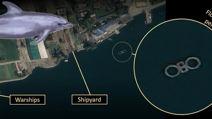 """外媒:衛星照片顯示朝鮮或擁有""""海豚部隊"""""""