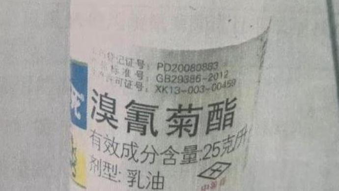 """非法捕撈判兩個月!地籠網捕一兩蝦嫌少,改用""""敵殺死""""毒魚"""