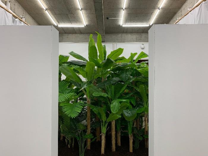 武希文 《热带》 尺寸可变 仿真植物 造雾机 水晶吊灯 油汀 声音装置等 2019
