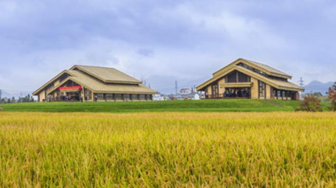 中國學者確認:約1萬年前的中國上山文化是世界稻作文化源頭