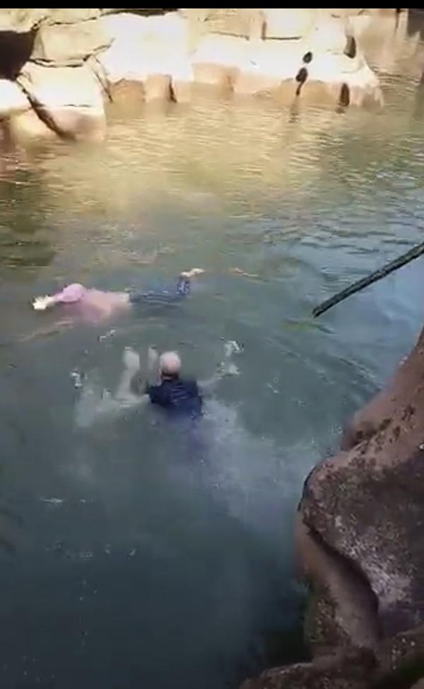 史云森跳入水中施救現場視頻截圖
